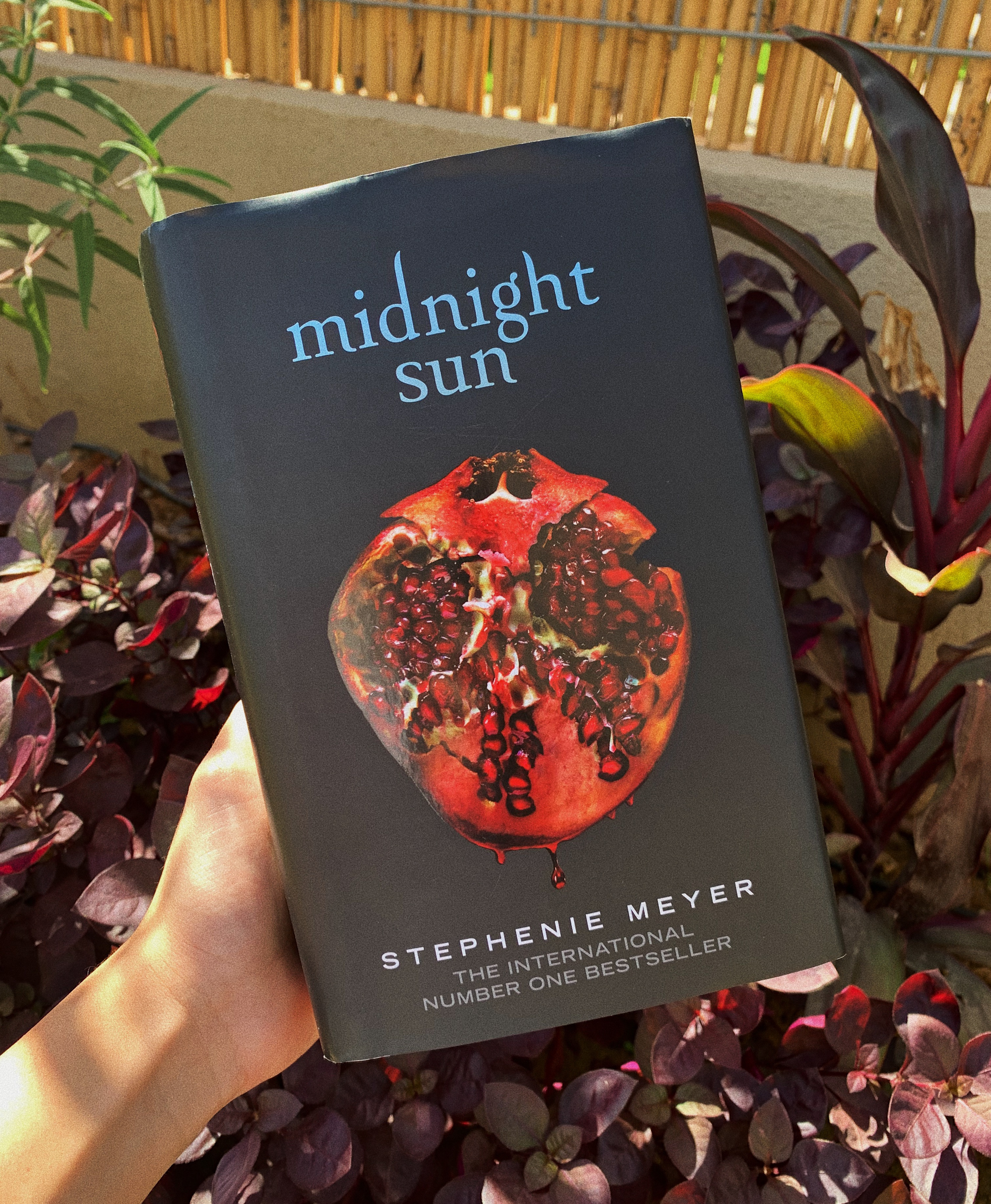 Book Review: Midnight Sun 🦇